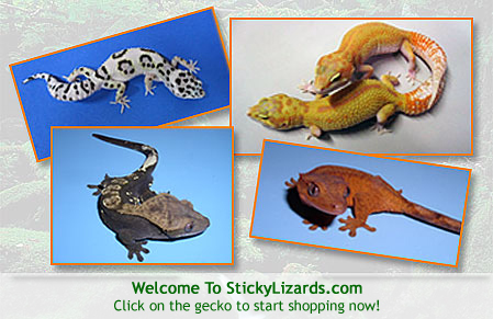 stickylizards.com